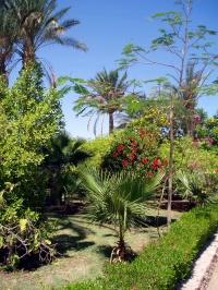 Za menej - Záhrada hotelového rezortu