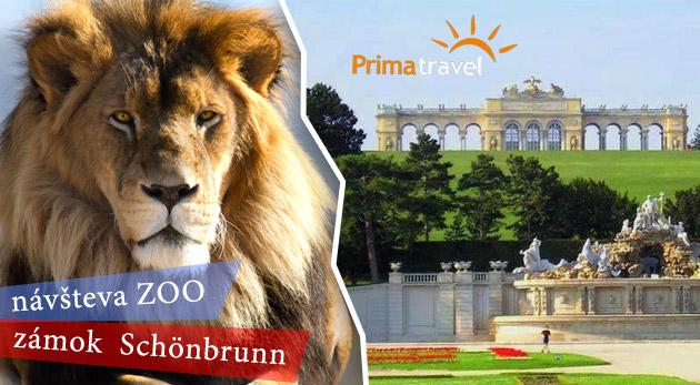 Fotka zľavy: Jednodňový zájazd do Viedne za 16,90€ - prehliadka najstaršej ZOO v Európe i zámku Schönbrunn s nádhernými francúzskymi záhradami.