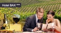 Zľava 53%: Poďte prežiť trošku romantiky na čarovnú južnú Moravu do Hotela Bax*** len za 79 € pre dvoch. V cene aj polpenzia, fľaša vína, welcome drink a všetky pamiatky na dosah!