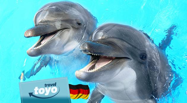 Fotka zľavy: Rozžiarte očká vašich detí aj tie svoje - poteší vás zájazd do delfinária, návšteva ZOO a atraktívna show s delfínmi v nemeckom Norimbergu len za 49 €.