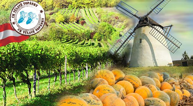 Fotka zľavy: Jesenný zájazd na tekvicové slávnosti do starobylého rakúskeho mestečka Retz plný vôní, dobrého jedla a farieb len za 24 € vrátane prehliadky mesta známeho labyrintom historických vínnych pivníc!