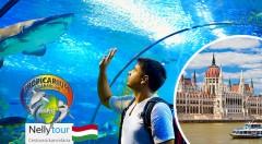 Zľava 42%: Objavte maďarské hlavné mesto a ich Tropikárium na jednodňovom zájazde s CK Nelly Tour len za 18,90 €. V cene doprava klimatizovaným autobusom aj prehliadka mesta so sprievodcom.