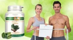 Zľava 70%: Zelená káva - váš pomocník v boji s nadmerným tukom a nadváhou, len za 6,99 € - v balení 60 tabliet. Okrem toho je silný prírodný antioxidant a podporuje zdravie vášho srdca!