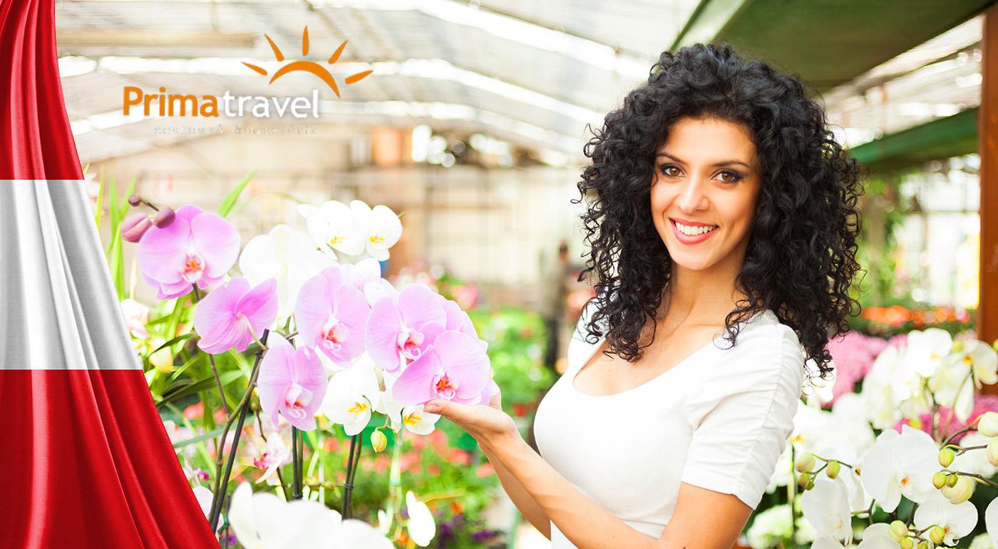 Fotka zľavy: Deň plný zážitkov v Rakúsku v znamení najväčšej výstavy orchideí, lahodného vína a starobylého kláštora v Klosterneuburgu - výlet s CK Prima travel len za 17,90 € vrátane dopravy a služieb sprievodcu.