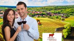 Zľava 34%: 3-dňový vinársky pobyt na Morave v Penzióne v zahraničí - Bořetice Kraví Hora pre dvoch len za 58 €! V cene ubytovanie, raňajky, večere, živá hudba, chutné vínka a dieťa do 10 rokov zadarmo!