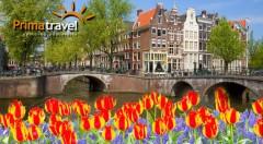 Zľava 26%: Spoznajte krásne Holandsko počas 4-dňového zájazdu s CK Prima Travel len za 139 € na osobu. Navštívte kúzelnú výstavu kvetov, tradičný skanzen a nespútaný Amsterdam!