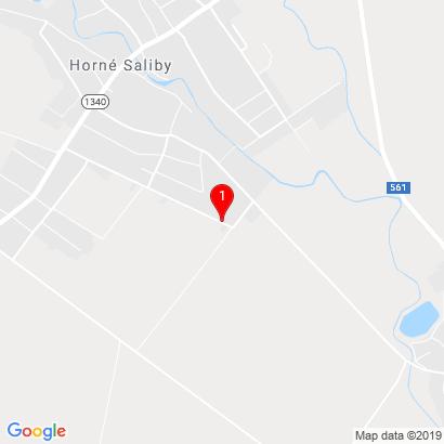 Janov dom 554,Horné Saliby,925 03